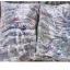 ขายส่ง เสื้อกันหนาว เสื้อแขนยาว ส่งตัวละ 95 บาท thumbnail 71