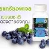 ผลิตภัณฑ์บลูเบอร์รี่ อายแคร์ซอฟท์เจล Blueberry Eyecare Softgel
