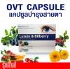 OVT CAPSULE 1 กล่อง/30เม็ด