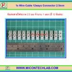 1x ข้อต่อสายไฟ 12 จุด ขนาด 2.5 มม (Wire Cable 2.5mm 12 Ways Connector)