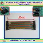 1x Jumper (F2M) cable wire 40pcs 2.54mm 20cm Female to Male