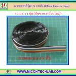 1x สายแพสีรุ้งแบบ 10 เส้น พิทซ์ 1.27 มม. ยาว 1 ฟุต (Ribbon Rainbow Cable)