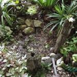 (แชร์ไอเดีย) การจัดสวนน้ำในบ้านด้วยงบประมาณ 0 บาท