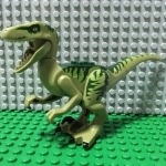Dino Raptor (Charlie)