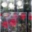 กล่อง-ใส่ดอกไม้ ขนาด 3 x 3 x 18 นิ้ว หรือ 7.6 x 7.6 x 45.7 cm thumbnail 2