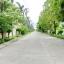 H864 ขายบ้านเดี่ยว 72.5 ตร.วา ม. วิลล่า สราสินี ติดถนนสายไหม ซอยสายไหม 74/1 เขตสายไหม 4 นอน 3น้ำ ต่อเติมพื้นที่ สภาพสวยพร้อมอยู่ thumbnail 21