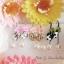เลือกสีด้านในค่ะ ต่างหู Lovely Ladybug Korea ER4517 thumbnail 8