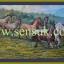 ม้าแปดตัวมาใหม่(เหลือรูปเดียวแล้วปีม้ามาแรงคึกคัก) thumbnail 1