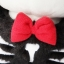 Mitu Black cat doll - ตุ๊กตา Mitu ผีแมวดำค้างคาว thumbnail 9