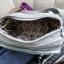 กระเป๋าสะพาย kipling thumbnail 4