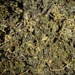 [[ขายส่ง 10 กิโล]] เจียวกู่หลานสายพันธุ์จีน เกรดธรรมดา 10 กิโลกรัม ราคากิโลกรัมละ 550 บาท