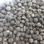 ชาเขียวมะลิไข่มุก Jasmine Pearls Green Tea 200g. ลดไขมันและคอเลสเตอรอลในเส้นเลือด จำกัดภาวะความเสียหายที่เกิดจากอนุมูลอิสระให้แก่เซลล์เนื้อเยื่อ ชะลอความแก่ ช่วยลดความเครียด