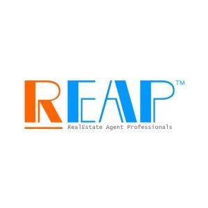 Real Estate Agent Professionals