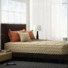 Lotus Mattress - Advance - Free Bedding Set